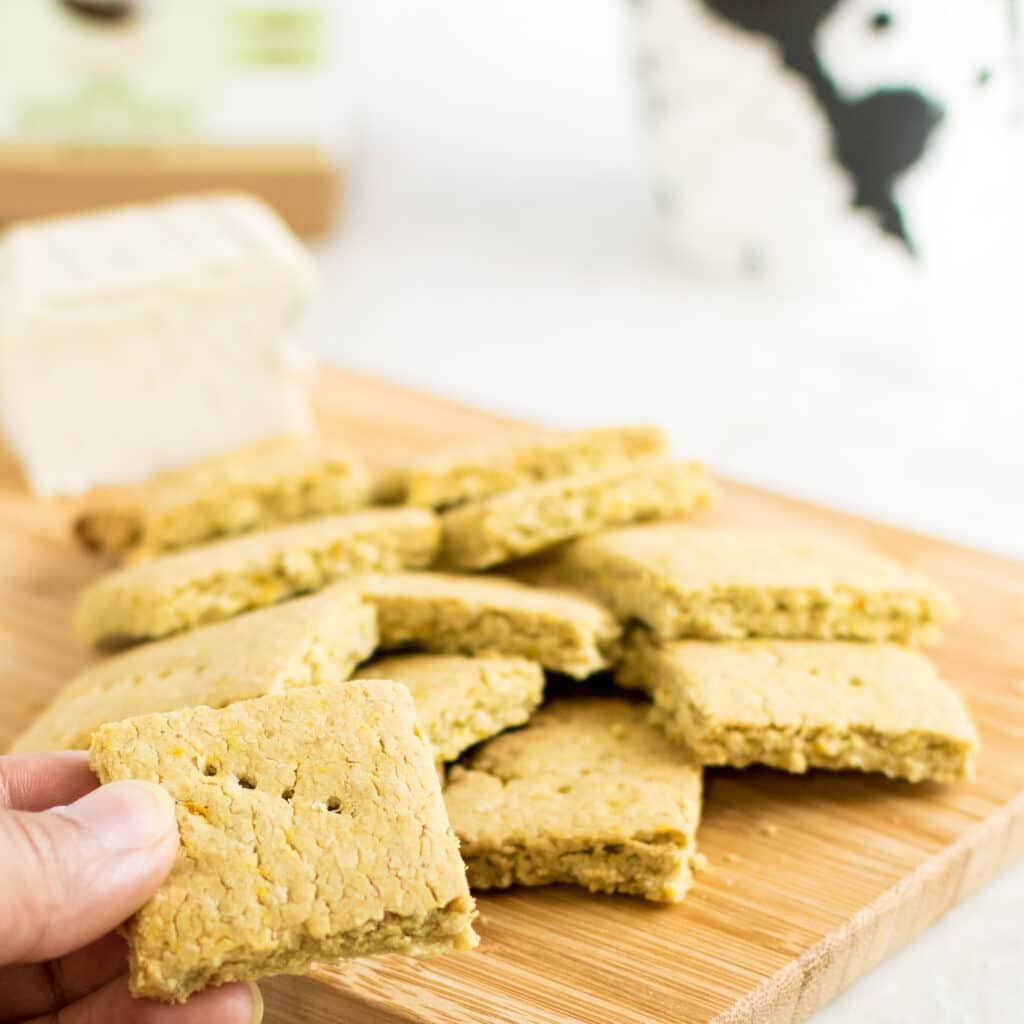 A hand holding Vegan Cheese Turmeric Oats Crackers